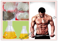 Testosterone isocaproate 15262-86-9 White Strongest Testosterone Powder For Anti-inflammatory