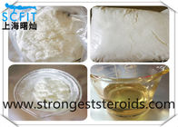 Porhormone Steroid Powder Trestolone Acetate for Muscle Gaining 6157-87-5