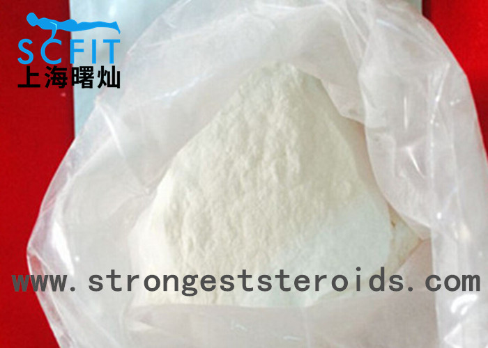 Strongest  Anabolic Steroid Test Testosterone Isocaproate Ester Raw Powder 10g/sample bag