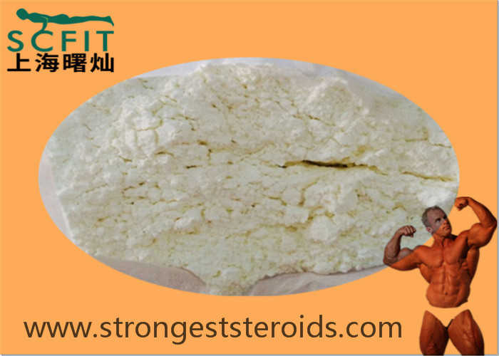 USP Standard White Anabolic Steroids Estradiol Valerate  979-32-8 For Female Sex  Strength
